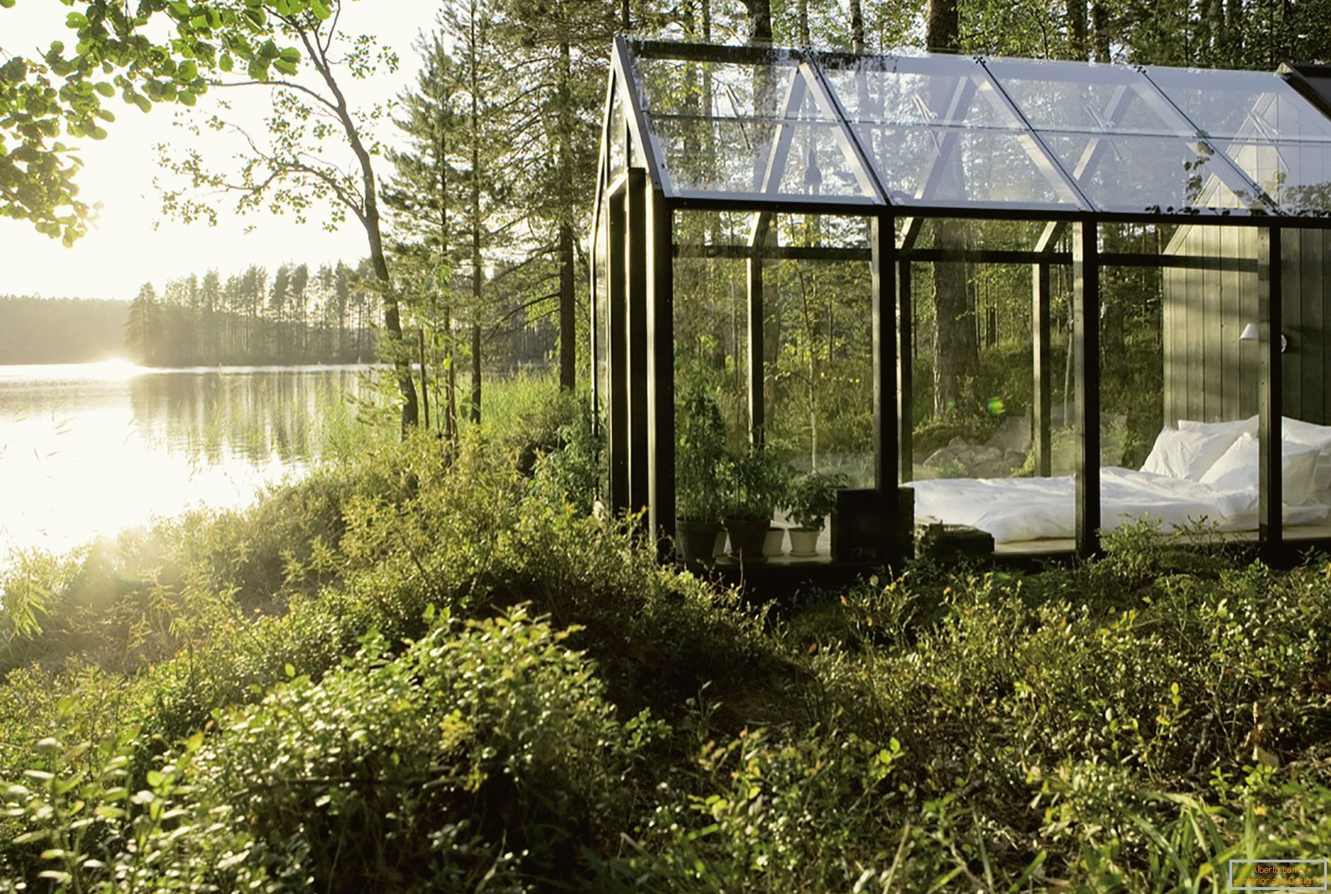 Design of a greenhouse in the middle of the forest