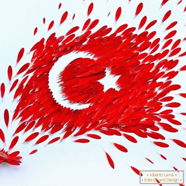 Flag of Turkey from petals of flowers