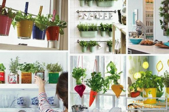 Original kitchen decor - photos of ideas with green herbs