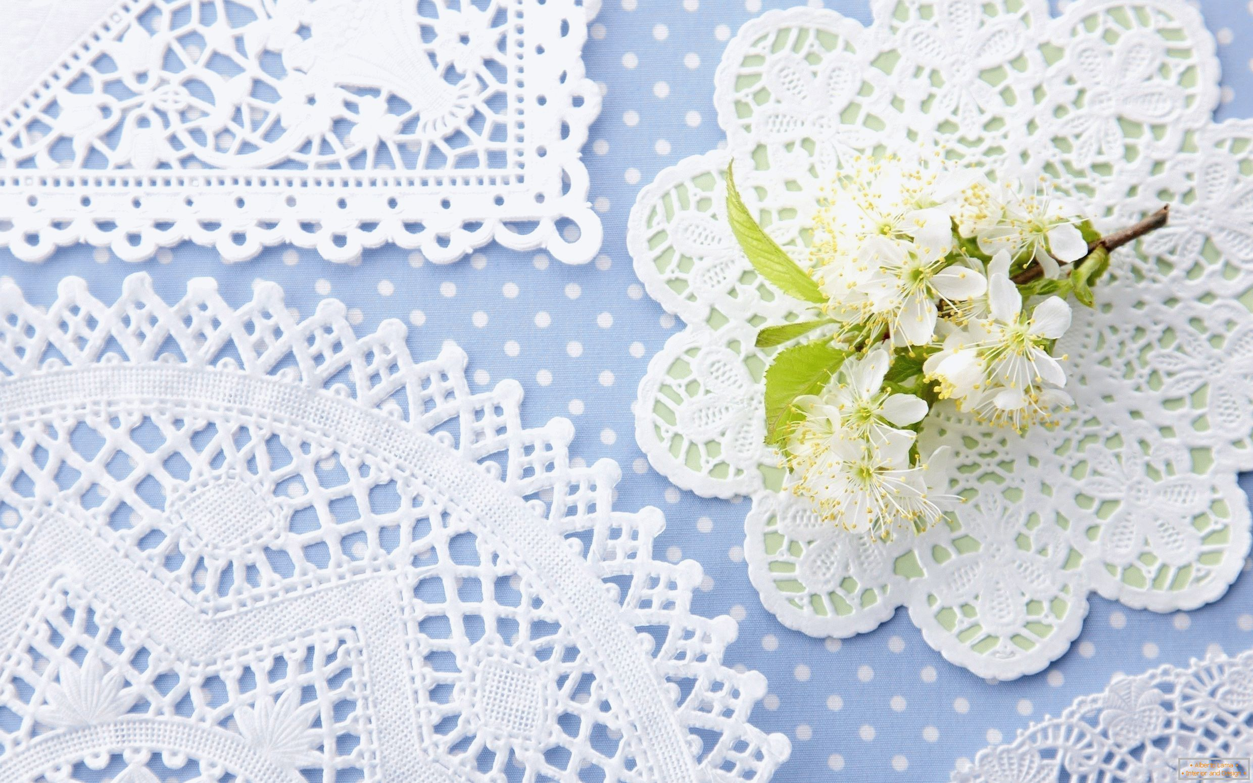Lace napkins for home