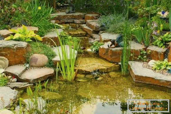 The landscape of the yard with their own hands - a photo with a small pond