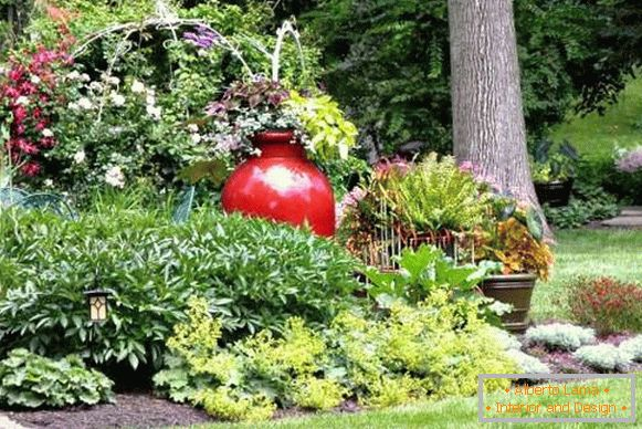 Landscaping of the yard - photo with your own hands made ideas