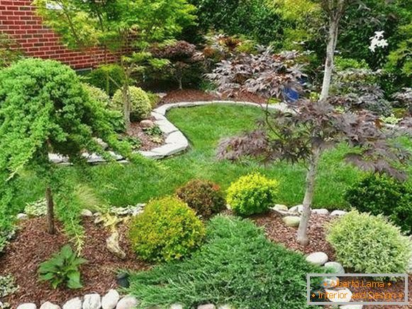 Landscaping of a private house with their own hands - photos of flower beds and plantings