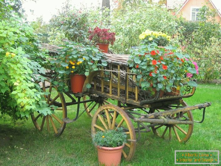 Original flower beds in the country style can be made from an old cart or an unnecessary bicycle.