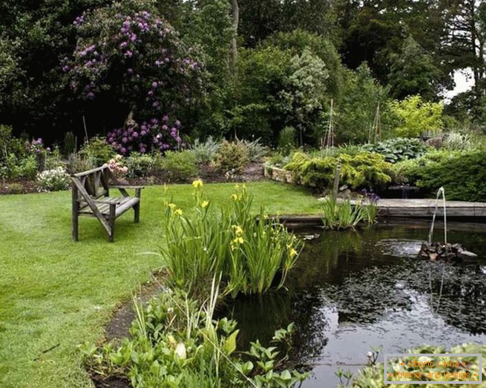 Landscaping design of the garden in a cozy country style (52 photos)