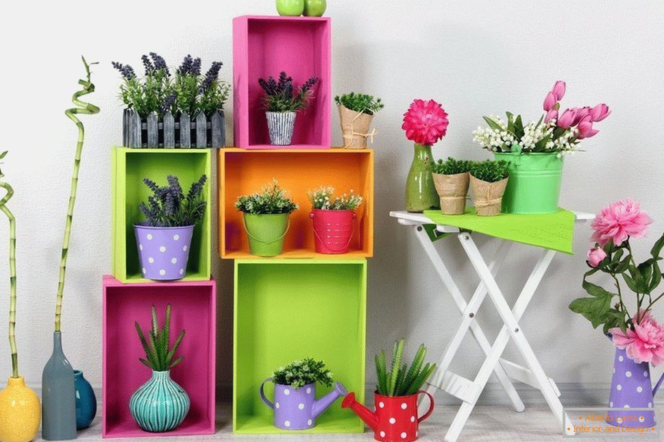 Vases for children with spicy plants