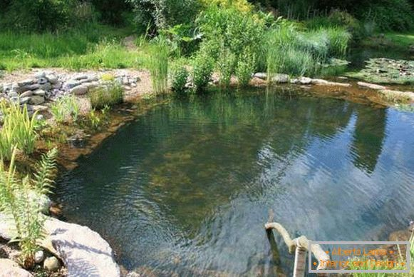 Beautiful pools - design with your own hands with photo