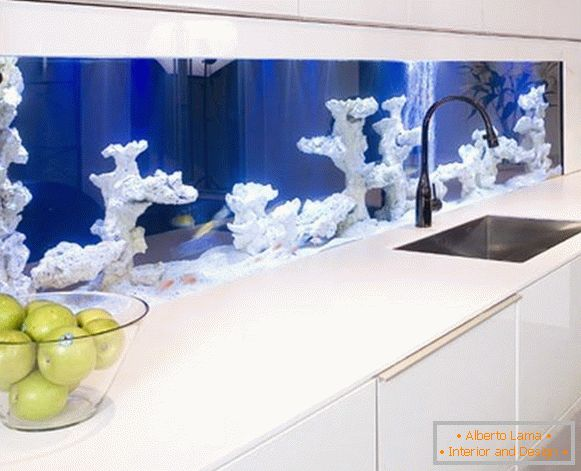 An aquarium with corals in the kitchen