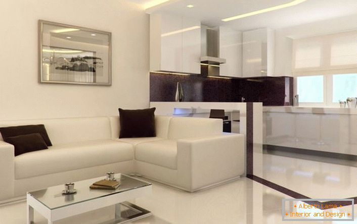 Studio apartment in the style of minimalism is spacious and bright. Superfluous decorative elements of the interior do not overload the interior.