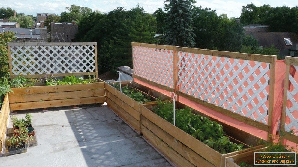 Narrow vegetable beds