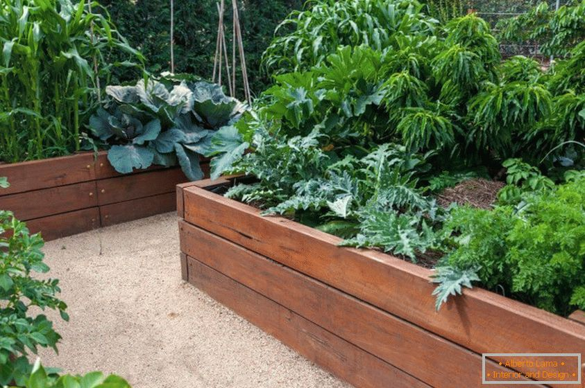Wooden containers for the garden
