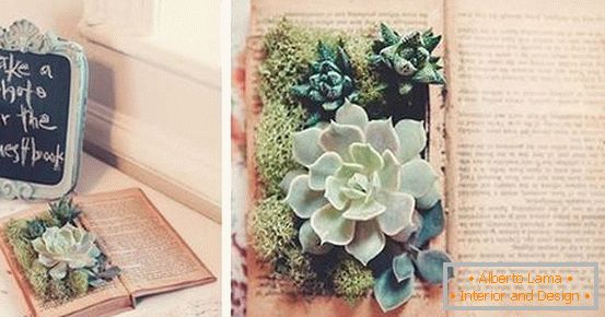 Decor - a book with plants