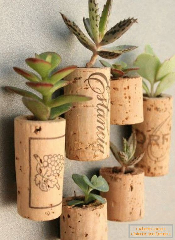 Succulents in wine stoppers