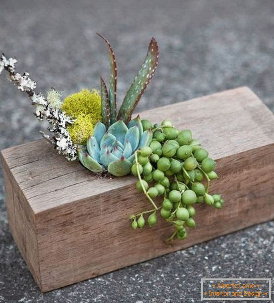 A wooden piece with plants