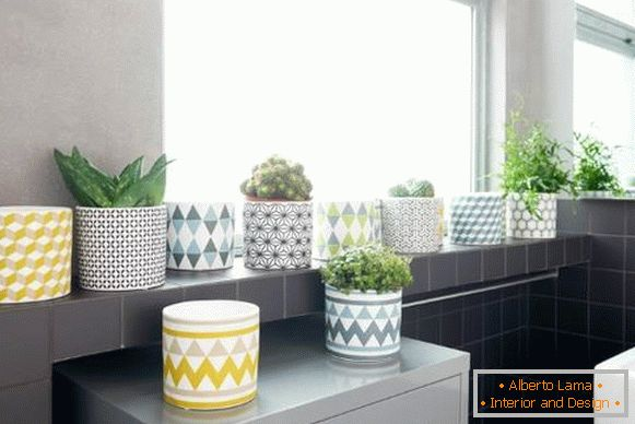 Print on pots in the trend of spring 2016